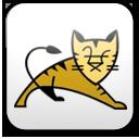 Tomcat